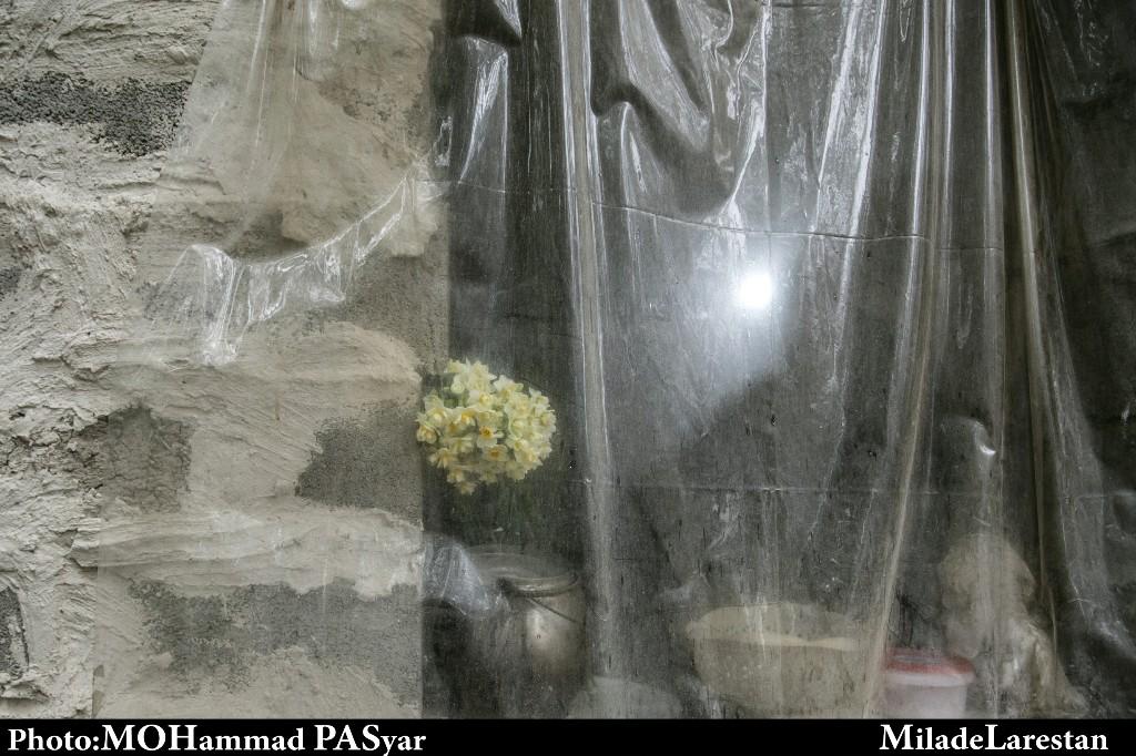 برداشت گل نرگس از باغات شهر خفر از نگاه دوربین میلاد لارستان